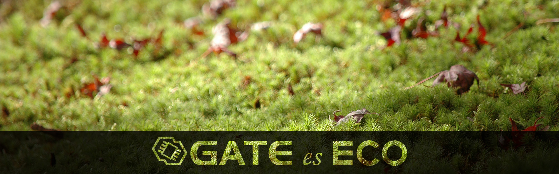 Gate-es-ECO_main