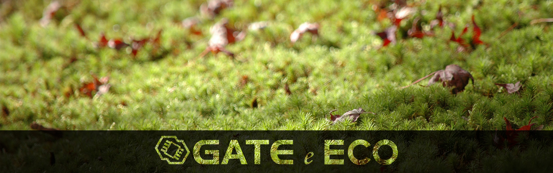 Gate-e-ECO_main