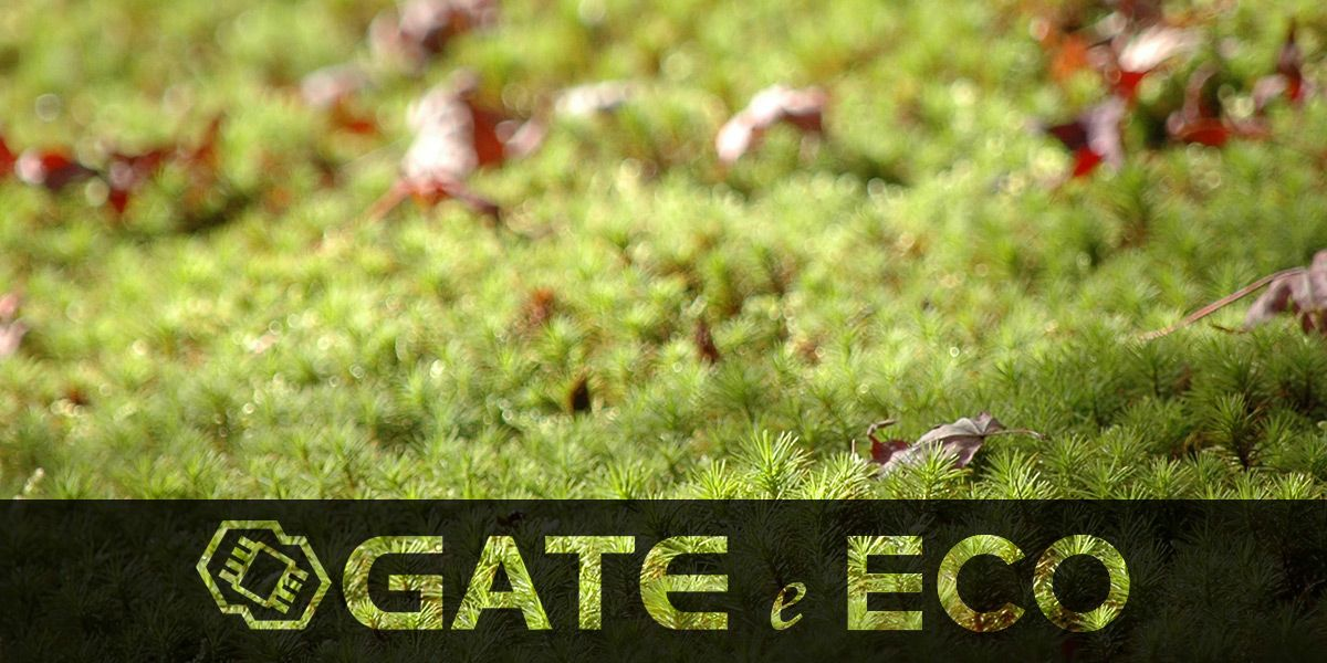 Gate-e-ECO_tablet