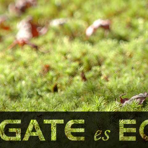 Gate-es-ECO_phone